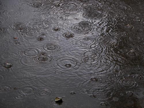 A Picture of Rain